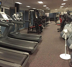 workout area 2d 250